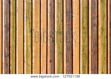 Close-up of a colorful wood board on board fence.