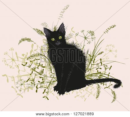 Vector illustration. Hand drawing of a black cat in a withered grass. On a white background.