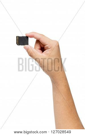 Hand holding SD card isolate on white background