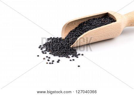 Beluga. Black Lentil In Scoop