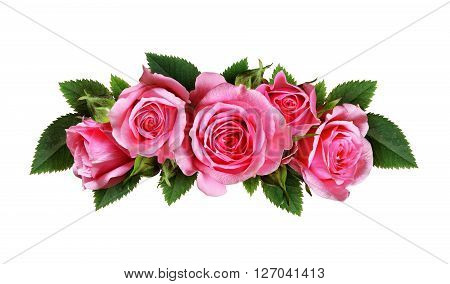 Pink rose flowers arc arrangement isolated on white