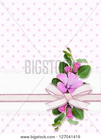 Bindweed flowers and ribbon bow on pink spotted background