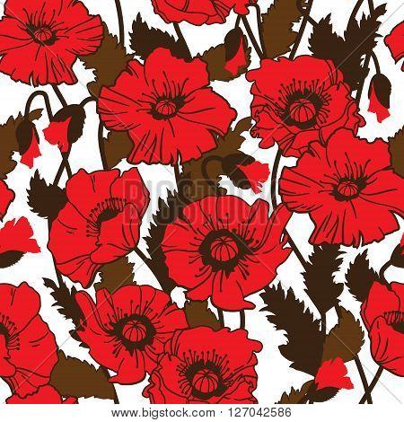 Papaver rhoeas also known as corn poppy, corn rose, field poppy, Flanders poppy drawing. seamless pattern
