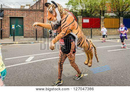 London United Kingdom - April 24 2016: London Marathon 2016. Runners in great costumes. Tiger costume