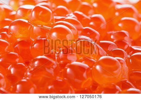 close up photo of the red caviar.
