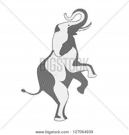 On the image is presented circus elephant on back legs illustration