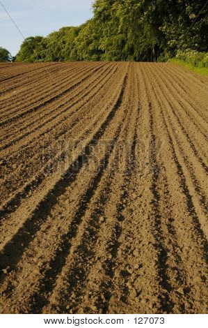 Ploughed 2