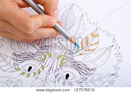 Female hand drawing with crayon in adult anti stress coloring closeup