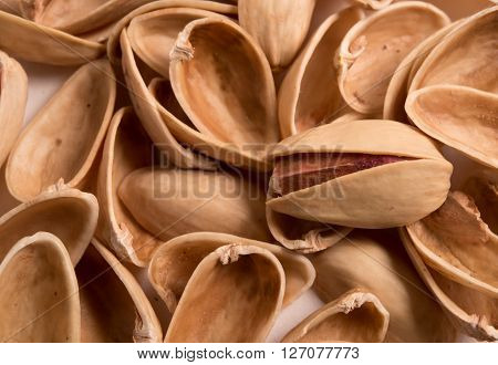 single pistachio on pistachio shells close up