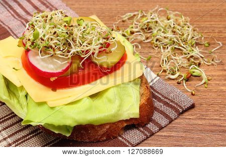 Freshly prepared vegetarian sandwich with alfalfa and radish sprouts lying on wooden table concept of healthy lifestyle diet food and nutrition