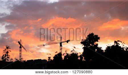 image of many Crane Tower on Sunset Sky Background