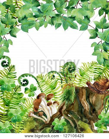 Forest watercolor background. Woods stump mushroom leaves moss ivy and snail. Watercolor natural wildlife card. Hand painted forest wildlife illustration