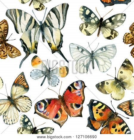 Butterflies seamless pattern. Hand painted watercolor illustration