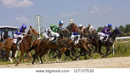 PYATIGORSK,RUSSIA - AUGUST 11,2013:Horse race for the prize Sravnenia in Pyatigorsk,Northern Caucasus,Russia on August 11,2013.