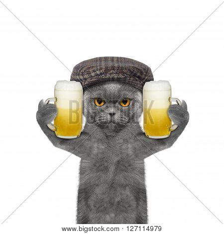 Cat drinks beer and greeting somebody -- isolated on white