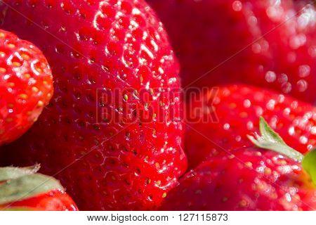 Strawberry Macro, Strawberries Closeup
