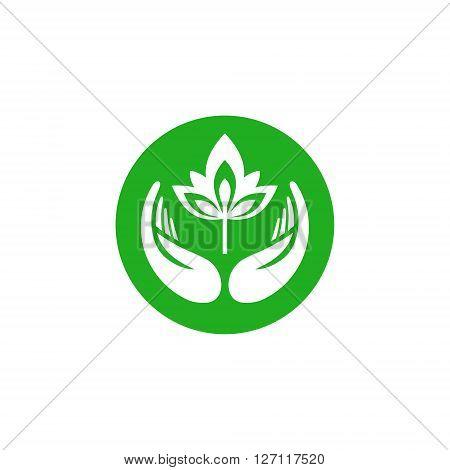 Vector sign vegan food.  Organic Life symbol