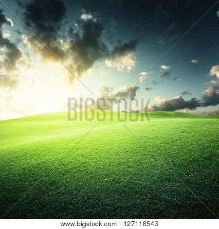 sunset and field of green grass