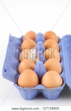 Open egg carton with ten chicken eggs