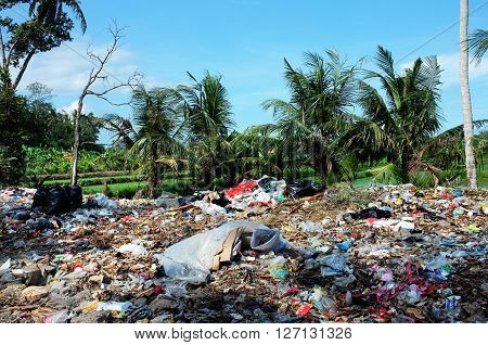 BALI INDONESIA - APRIL 10: Household garbage and plastic bags contaminate rice fields and agricultural farmland at an illegal garbage dump on April 10 2016 in Ubud Bali Indonesia.