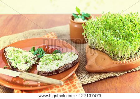 terracotta-hedgehog with home-grown garden cress and plate with brown bread and cream cheese garnished with cress lettuce and tomato on old jute sack warm image mood