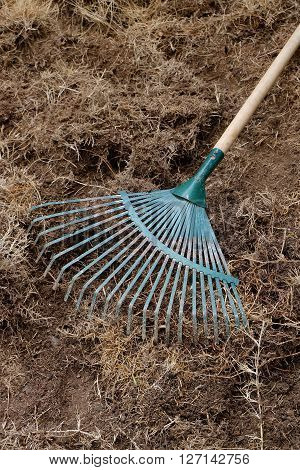 Yard Work, Preparation Soil In Garden With Rake Shoveling Dry Grass