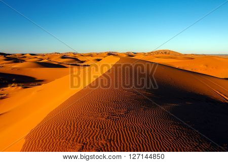 sahara desert death valley sand dune and blue sky