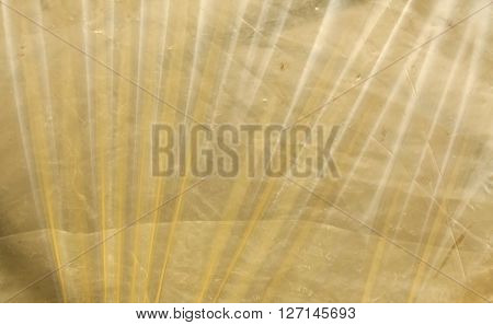 Yellow Plastic Film Surface.