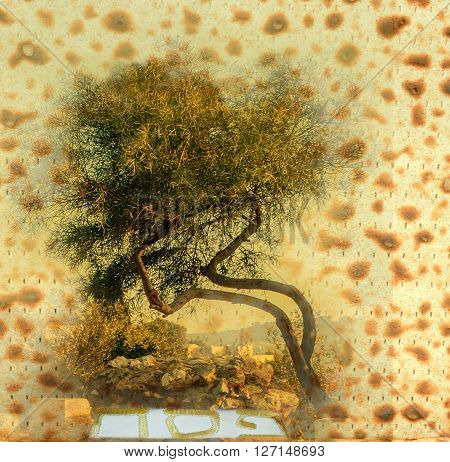 Collage of Jewish bread for Passover as background and 
