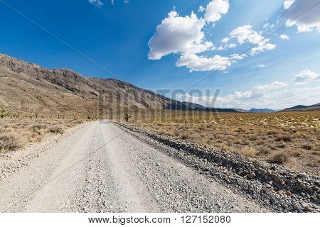 Nature Along The Street To Racetrack, Death Valley National Park