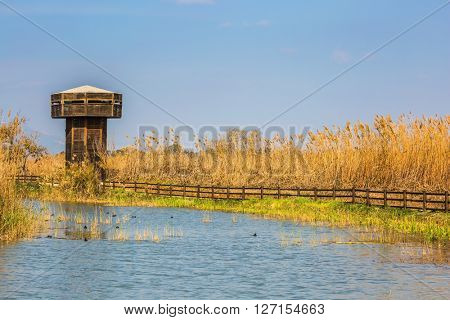 Wooden tower for bird watching. Hula Nature Reserve, Israel, December. Lake Hula is wintering place for migratory birds