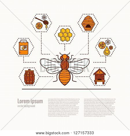 Honey bee icon illustration. Honey bee vector symbol. Bee, honey, bee house, honeycomb, beehive, flower. Outline style honey bee icon. Vector icon honey bee. Mead bee icon illustration