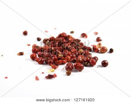 Pink peppercorns, scientific name Schinus molle (from Peruvian pepper tree)
