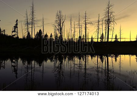 Small pond after sunset Yellowstone National Park Wyoming