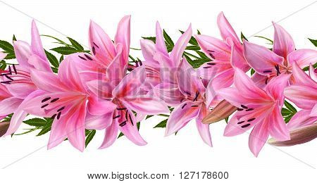 Horizontal floral border. Pattern seamless isolation. Flowers. Flower garland of lilies.