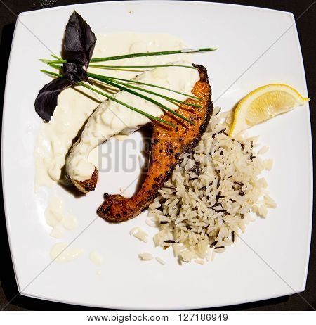 Fresh sustainable salmon with herbs on white dish