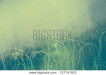Abstract blured green photo with chaotic thin lines. Design background.