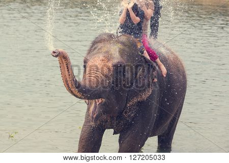 Elephant bathing in the river, Chitwan, Nepal