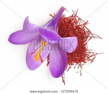 Flower crocus and dried saffron spice isolated on white background.