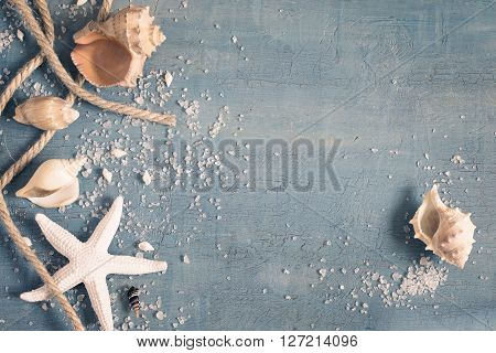 Monochrome blue and white vintage background with seashells starfish and a rope space for text tinted