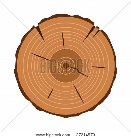 Tree trunk cross section natural cut wood slice circle timber ring flat vector. Wood slice natural plant circle and wood slice pattern stump. Rough old material wood slice texture tree.