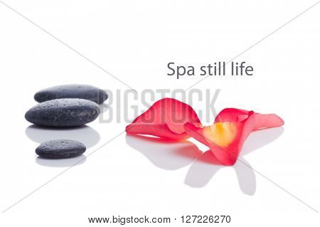 spa still life with rose petals  and stones isolated on white background