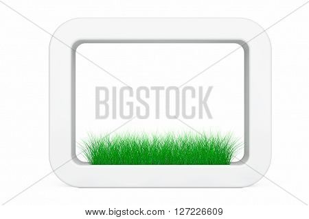 Grass in White Ceramics Planter on a white background. 3d Rendering