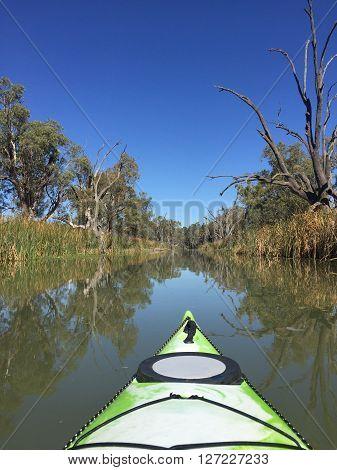 Kayak along River Murray Creek still water