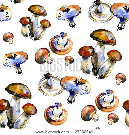 Watercolor summer insulated edible mushrooms pattern on white background