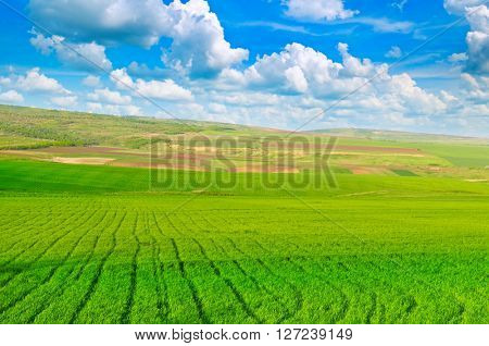 beautiful rural landscape and blue sky