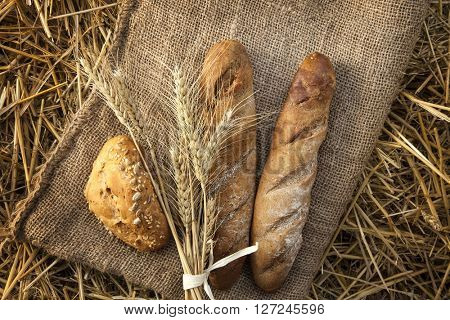 ears of wheat and bread lay on sackcloth in the haystack