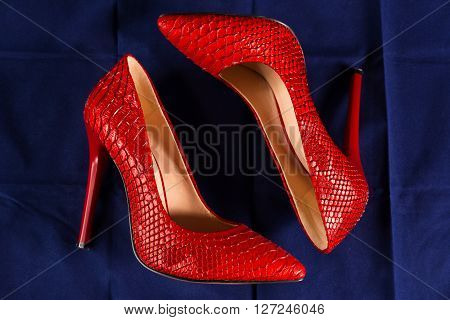 red stiletto heels of snakeskin on blue background