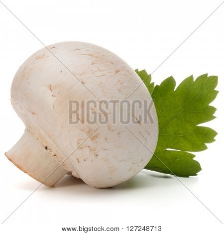 Champignon and parsley herb still life isolated on white background cutout