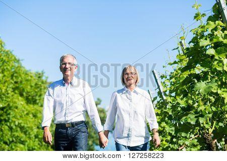 Senior woman and man having walk in summer